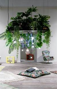 indoor plants ideas 99 great ideas to display houseplants indoor plants