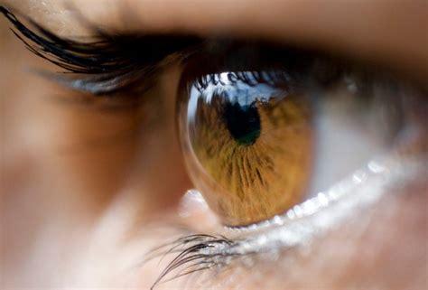 imagenes de ojos observando c 243 mo maquillar tus ojos