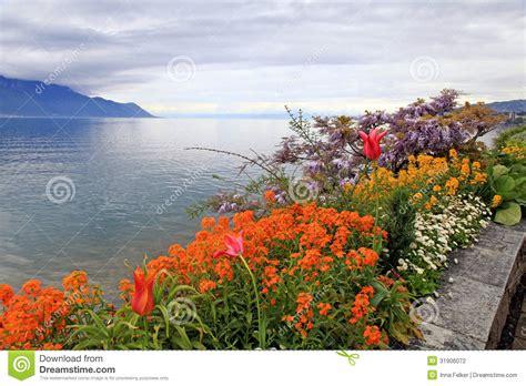 Geneva Flowers 8 landscape with flowers and lake geneva montreux