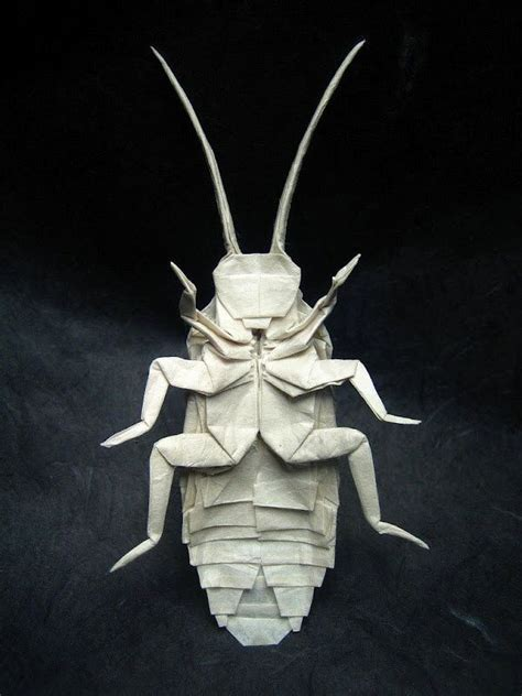Awesome Origami - 275 best images about insects inspire us ed on