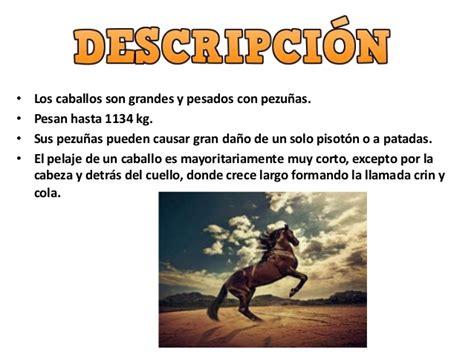 imagenes mitologicas con su descripcion el caballo