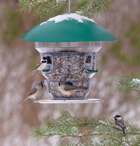 Cool Bird Feeders Bills Bird Feeder Unique Bird Feeder