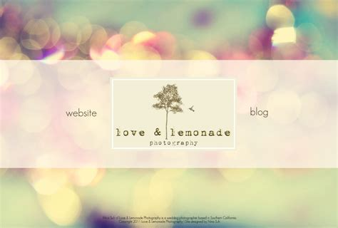 Best Wedding Photography Websites by Lemonade Photography Los Angeles Orange County
