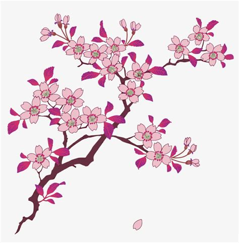 cherry pattern vector art vector sakura cherry blossoms flower decorative pattern