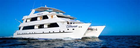 galapagos catamaran charter cormorant luxury catamaran galapagos luxury cruises
