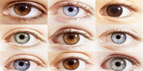 what is the rarest eye color the 25 best rarest eye color ideas on