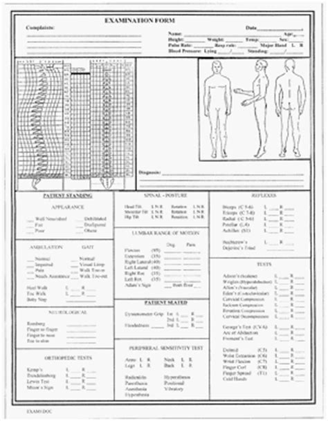 chiropractic travel card template 23 images of chiropractic forms template leseriail