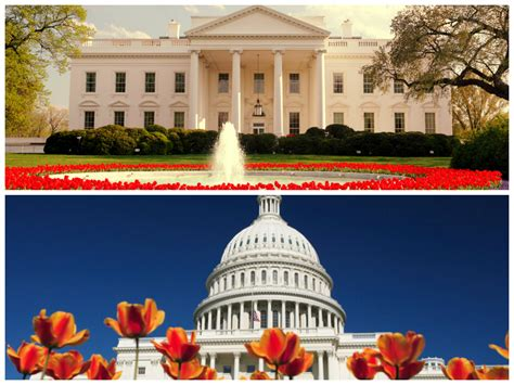 white house tours schedule tours and tickets congresswoman frederica wilson