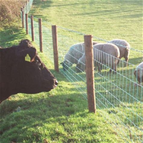 sheep wire  barbed frs fencing