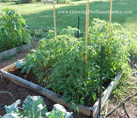 11 Tips For Designing A Raised Bed Vegetable Garden Layout Raised Vegetable Garden Layout
