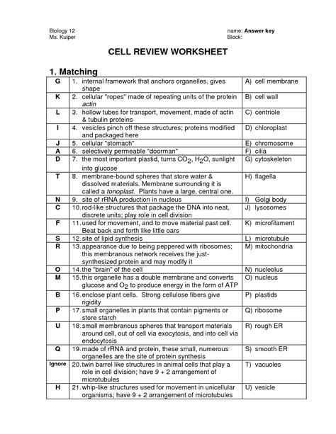 images  cells   organelles worksheet