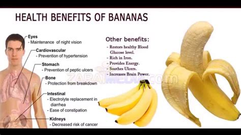 Banana Medicinal And Cosmetic Value by Top Health Benefits Of Bananas Banana Fruit Nutrition