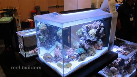 Saltwater C S Hagen fluval sea evo 12 equipment forum nano reef community