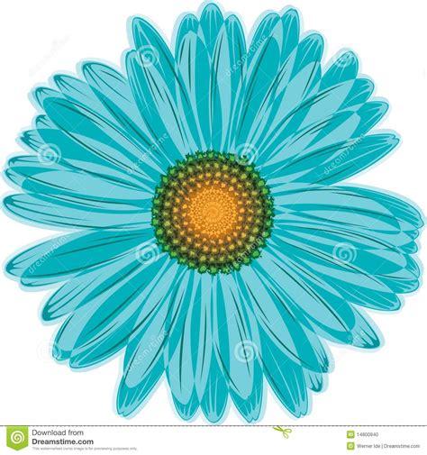 4 flores azules para jard flor de la margarita azul aqua foto de archivo