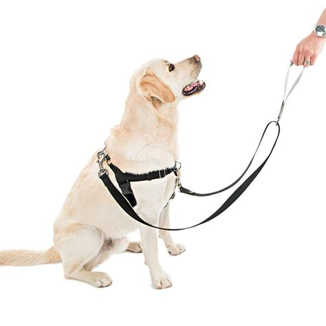freedom harness buy freedom harness no pull harness from only 28 99