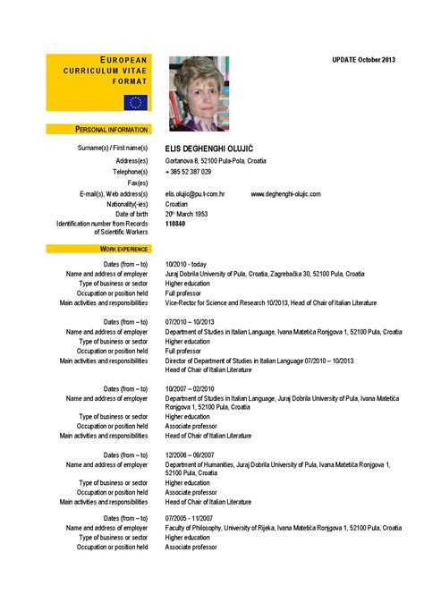 curriculum vitae european format doc ayo ngaji mlm