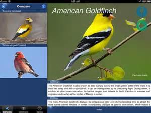 backyard birds america identification 2017 2018