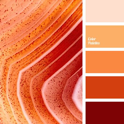 monochrome color monochrome orange colour palette color palette ideas