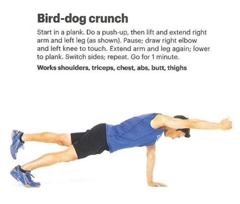 bird exercise 259 best images about abdominal exercises on side plank oblique crunches