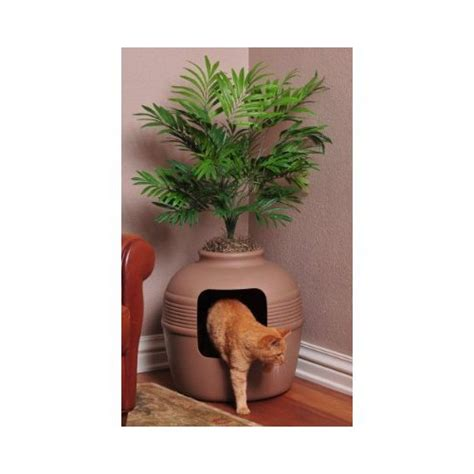 litter box planter practical and peculiar pet accessories