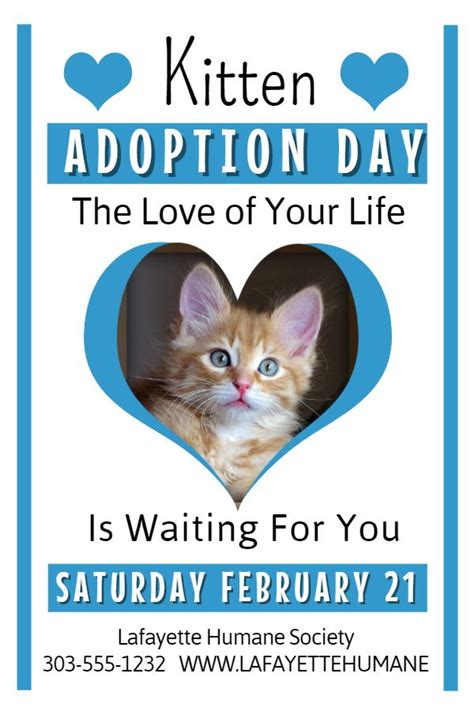 adoption flyer template cat adoption flyer template bryan flyers