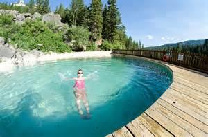 schwimmbecken im garten gartenpool salzwasser pool im eigenen garten bauen