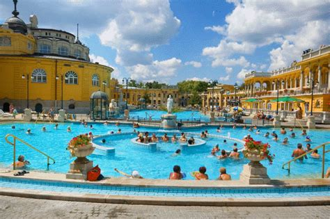 numero delle piscine 19