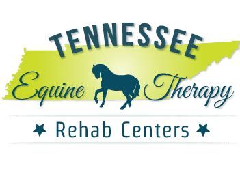 Free Detox Centers Near Tn by Tennessee Equine Therapy Rehab Centers
