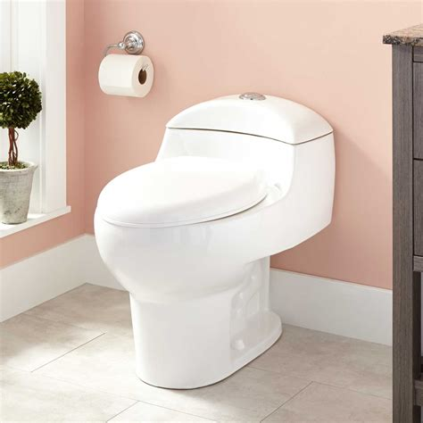 toilet in the bathroom paladino dual flush one piece elongated toilet bathroom