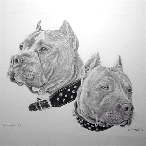 pitbull tattoo edmonton instagram pitbulls pit bulls pinterest b 246 se tattoos b 246 se