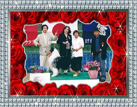 Dress 2002 Gch about us kiriko collies