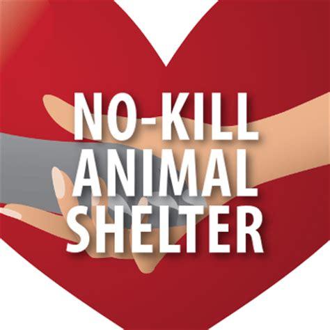 no kill shelters bideawee no kill animal shelter kentucky derby california chrome