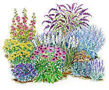 25 unique full sun garden ideas on pinterest full sun landscaping perrenial flowers and full
