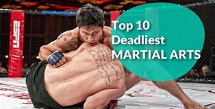 Image result for Top 10 Deadliest Martial Arts