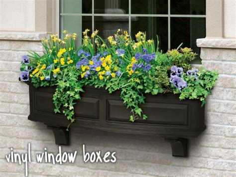 flower window box ideas 19 irresistible flower box ideas for your windows