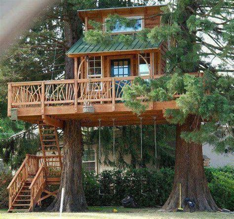 treehouse with swing gorgeous natural wood home wrapped in between two trees