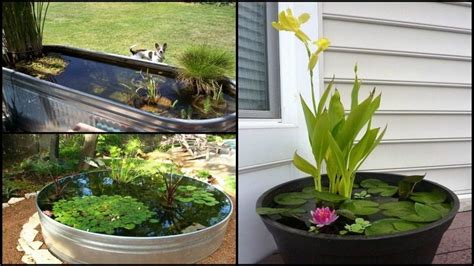 backyard aquarium awesome aquarium and fish pond ideas for your backyard
