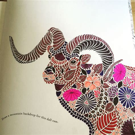 libro millie marottas animal kingdom dall ram from millie marotta animal kingdom colouring book colorir reino animal