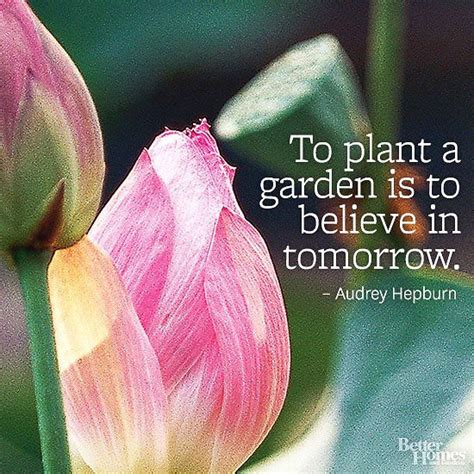 Garden Quotes Hepburn 17 Best Images About Garden Quotes On Gardens