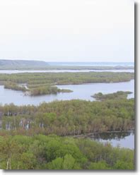 Which Feature Is Characteristic Of A Bottomland Hardwood Forest - central region bottomland hardwood management guide