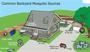 how to kill mosquitoes in home step 1 killing mosquito larvae 4 steps to ultimate