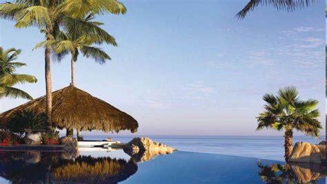 swimming pool resort palm trees caribbean sea flowers