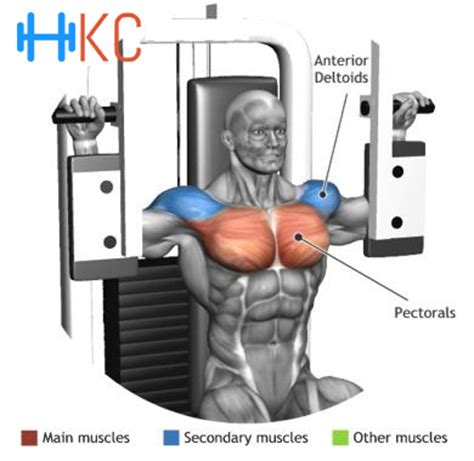esercizi per pettorali interni how to perform pectoral machine or butterfly exercise