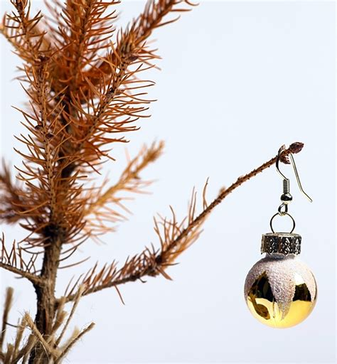 if your christmas tree is dying here s how to fix it