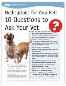 Veterinarian Questions medications for your pet 10 questions to ask your vet