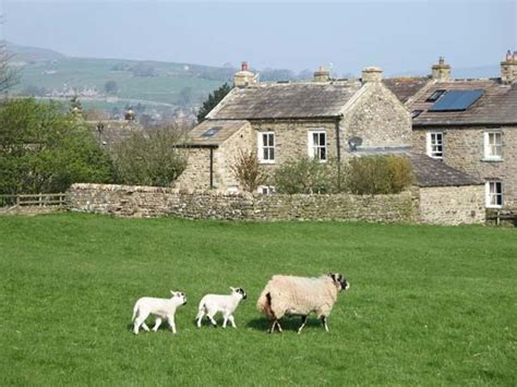 Cottages Reeth by Cross Beck Cottage Reeth Grinton Dales