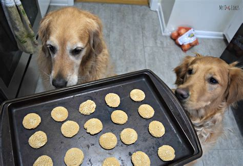 snickerdoodle puppies image gallery snickerdoodle