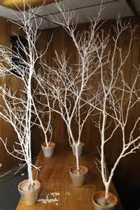 spray paint branches white silver and put in pots outside