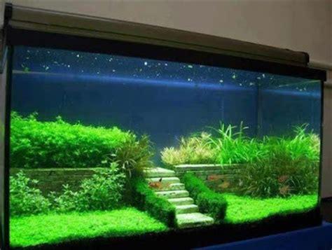 aquarium design application aquarium decoration idea android apps on google play