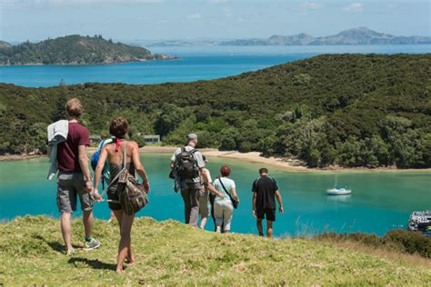 rock the boat tour nz discover the bay of islands hole in the rock cruise